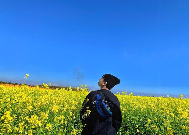 Dân mạng sửng sốt trước cánh đồng hoa cải vàng đẹp như tranh vẽ có thật tại Đà Lạt, xem ảnh mà ngỡ đâu nước Nhật xa xôi - Ảnh 3.